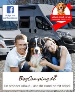 Dogcamping 2020